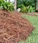 landscape mulching in the fall